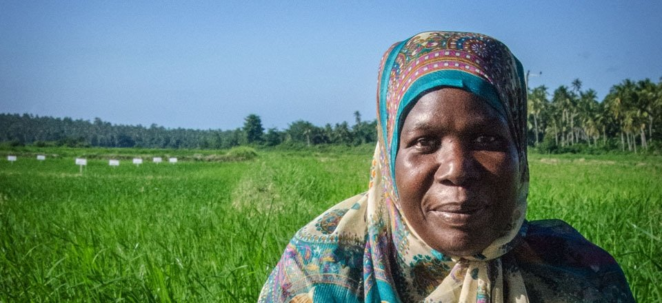 Female Zanzibar Rice Farmer